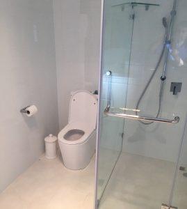 Bathroom Renovation (8)